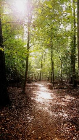 path 2